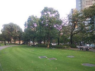 2012東京ミッドタウン周辺緑地.JPG