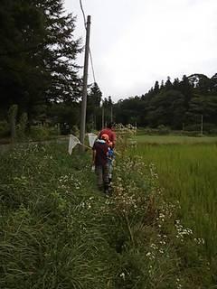 2012田んぼの学校・遠景2.JPG