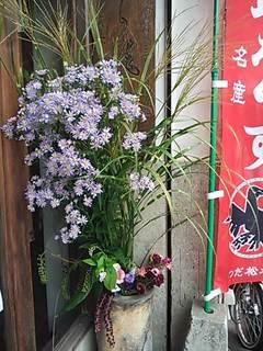2012秋の草花あしらい.JPG